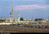 حج تمتع 98| امروز بیش از 2 هزار حاجی از مدینه به ایران بازمیگردند