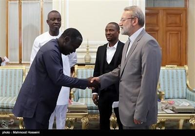 دیدار هیئت دوستی پارلمان غنا با علی لاریجانی