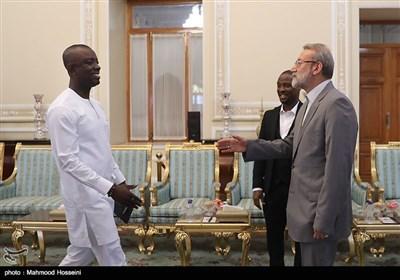 دیدار هیئت دوستی پارلمان غنا با علی لاریجانی رئیس مجلس شورای اسلامی