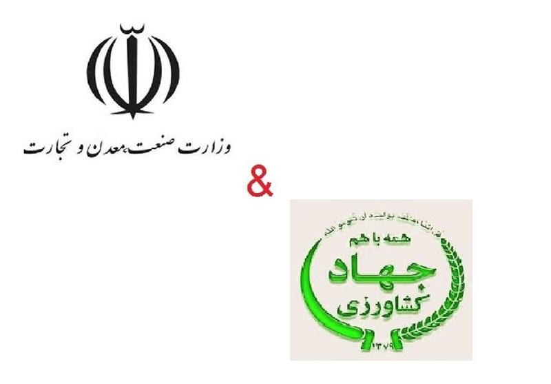 ابلاغ نرخ جدید سبوس توسط وزارت صنعت/ وزیر جهاد کشاورزی معترض شد + اسناد