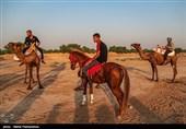 مسابقات شتر سواری در حمیدیه