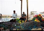 """جلوهای دیدنی از """"دریابست"""" در جزایر هرمزگان + تصاویر"""