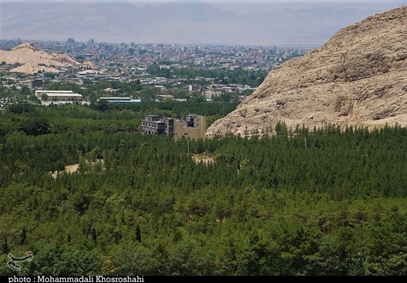 Pardisan Qaem Forest: The Largest Artificial Forest in Iran - Tourism news