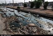 رفع معضل زباله مازندران با کمک سازمانهای مردم نهاد میسر است