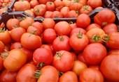 بخشنامه جدید وزارت صمت برای تسهیل صادرات گوجه/ قیمت گوجه در بازار 14 هزار تومان شد +سند