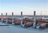 بوشهر  مجتمع عظیم گازی پارس جنوبی با تمام توان از سازندگان داخلی حمایت میکند