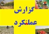 «گزارش عملنکرد»| «خودکفایی»، شاید دولتی دیگر/ چرا از تولید 100 میلیون تن محصول کشاورزی محروم شدیم؟