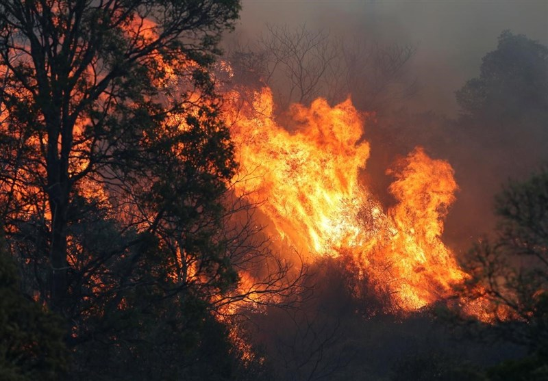 Two People Dead, 150 Homes Destroyed in Australian Bushfires
