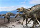 """""""خدای دایناسورهای ژاپنی"""" کشف شد + تصاویر"""