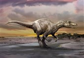 Discovery of Tiny Bones, Teeth Reveals Multiple Dinosaur Species Lived, Nested in Arctic