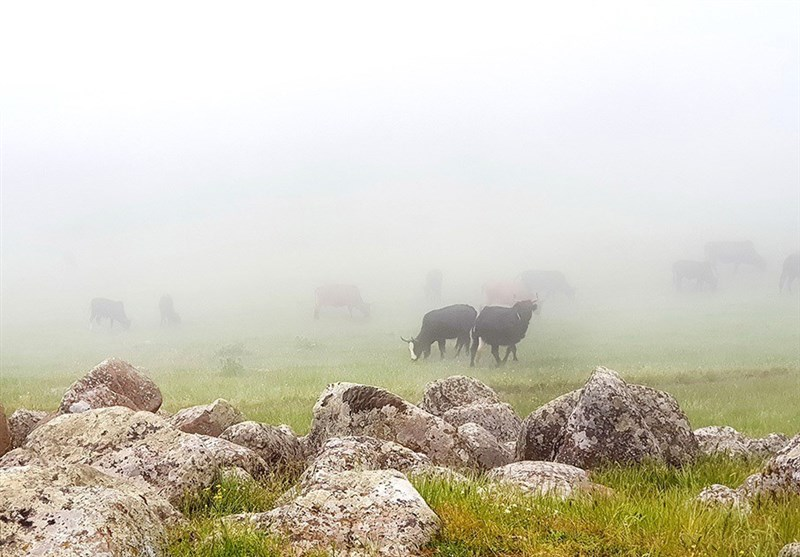 Choubar Countryside; A Heaven above The Clouds - Tourism news