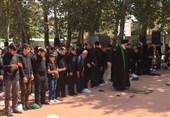 نماز ظهر عاشورا در سراسر استان البرزاقامه شد