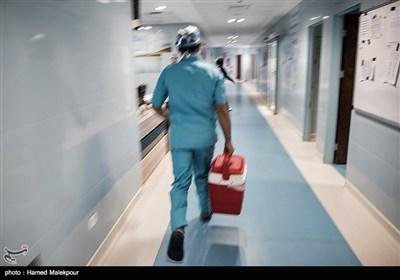 کلدباکس حامل قلب سجاد برای تحویل به تیم پروازی اوژانس کشور منتقل میشود.