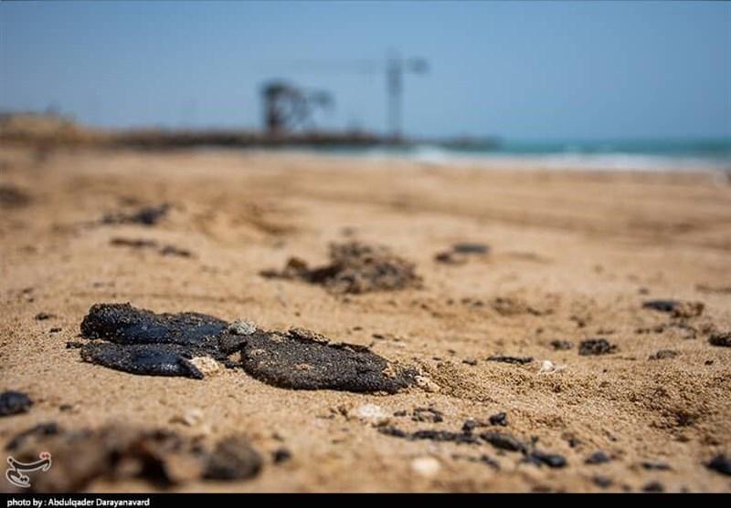 ماده سیاه مرموز میهمان سواحل قشم، لارک و هنگام شده است