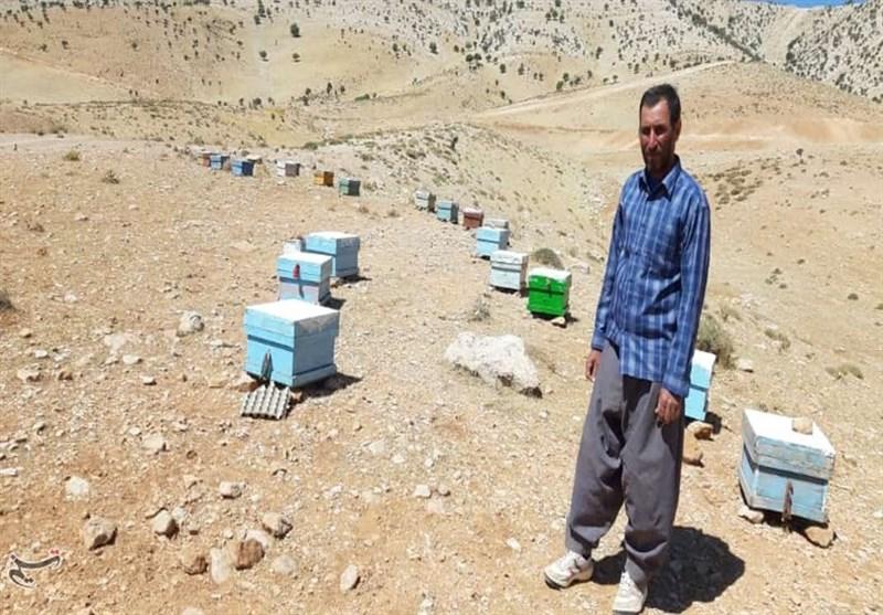 13 هزار خانوار عشایر زیرپوشش کمیته امداد اردبیل قرار دارند