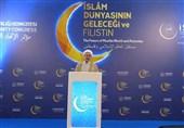 آیة الله الاراکی : بالوحدة الإسلامیة یمکن تحویل العالم الإسلامی إلى قوة عظیمة