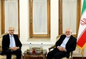 Zarif Voices Concern over Kashmir Situation