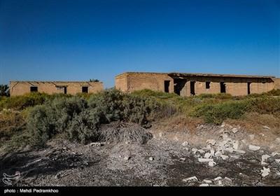 """اهالی این روستا که در بخش بستان دشت آزادگان است، می گویند: """"کشاورزی روستا کاملا نابود شده و در زمینهای باتلاقی تا سال ها نمیتوان چیزی کاشت."""