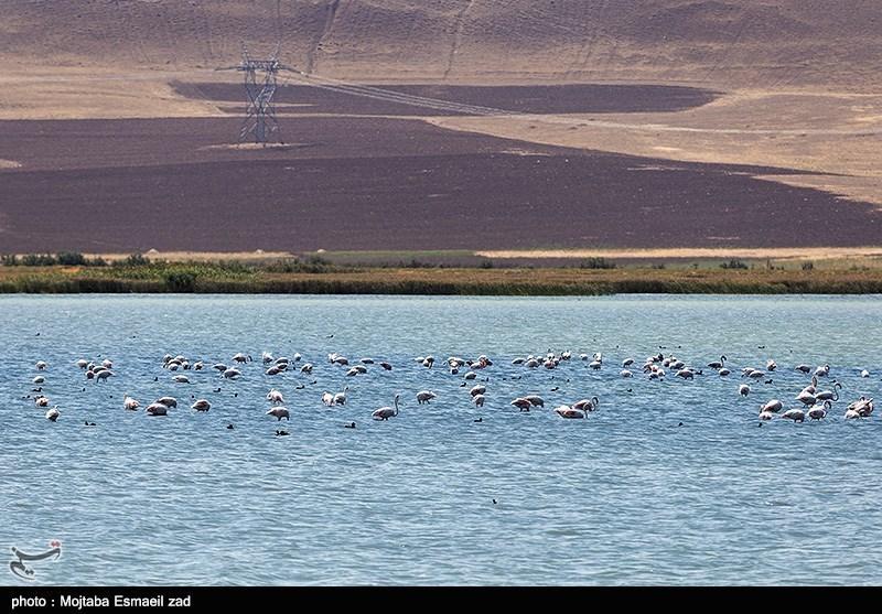 بحیرة أرومیة .. أکبر بحیرة فی إیران وثانی أکبر بحیرة مالحة فی العالم+صور