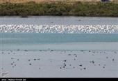حجم آب دریاچه ارومیه به 3000.000.000 مترمکعب کاهش یافت