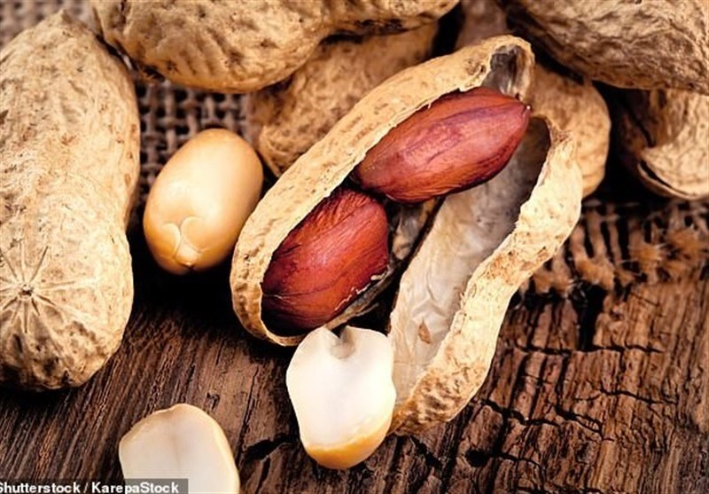 Poor Sleep, Lack of Exercise Increase Risk of Nut Allergy