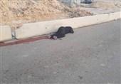 حماس: إعدام الفتاة بقلندیا یعبر عن سادیة وإجرامیة الاحتلال
