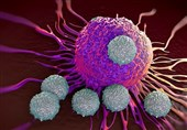 Molecule in Immune System Able to Trigger 'Suicide' of Cancerous Tumors