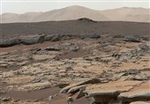 Earth Microbes Could Help Turn Mars Fit For Life