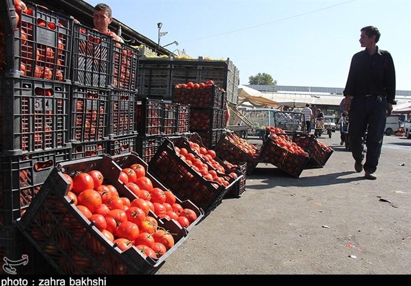 فروش گوجه فرنگی ایرانی با قیمت 14 هزار تومان در پاکستان