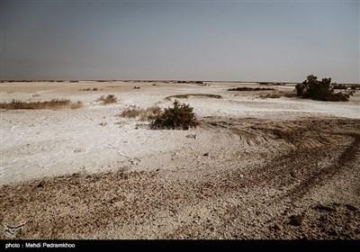 این تالاب که در سیل اخیر بسیاری از شهرها و روستاهای جنوب کرخه را از غرق شدن نجات داده، محل تخلیه پساب های کشاورزی است. با توجه به اینکه هورالعظیم یکی از کانون های گرد و غبار است، فعالان محیط زیست بارها نسبت به تخلیه پساب های شور و تبدیل شده هورالعظیم به نمک زار هشدار داده اند