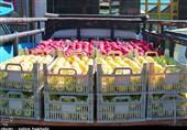 200 هزار تن سیب در سردخانههای آذربایجانغربی باقی مانده است/ مشکلی برای صادرات وجود ندارد