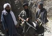 سخنگوی طالبان: با دولت گفتوگو نمیکنیم و به حمله علیه نیروهای آمریکایی ادامه میدهیم