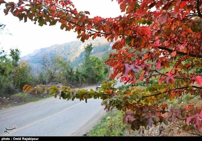 سمفونی رنگها در پاییز «اشکورات» گیلان به روایت تصویر