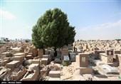 حجت الاسلام رفیعی: قبر هر انسانی روزی 5 بار ندا میدهد