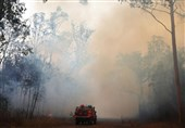 Fires Ring Sydney, Blanketing City in Thick Smoke