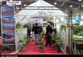 دوسالانه جشنواره و نمایشگاه ملی گیاهان دارویی برگزار نمیشود