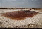 آثار مخرب مالچهای غیراستاندارد بر محیط زیست هورالعظیم
