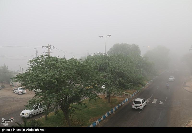 افزایش 2.9 تردد وسایل نقلیه در جادههای کشور/ مهگرفتگی در هراز و فیروزکوه