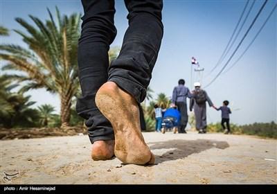 پیاده روی اربعین حسینی - طریق العلماء