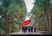 مسیرة أربعینیة الامام الحسین( ع ) - طریق العلماء