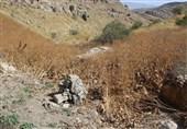 جمعآوری دوربینهای فاقد برچسب در پارک ملی تندوره