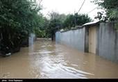 خسارت سنگین سیلاب در 14 شهرستان استان گیلان / کشت دوم مزارع برنج از بین رفت