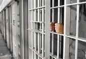 زندانیان جرائم غیرعمد سیستان و بلوچستان آزاد میشوند