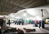برپایی 50 چادر برای اسکان زائران در نجف توسط سازمان بهشت زهرا(س)