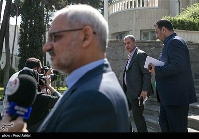 علی ربیعی سخنگوی دولت درحاشیه جلسه هیئت دولت