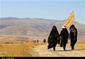 پیادهروی زائران رضوی| حرکت بزرگترین کاروان پیادهروی به مشهد مقدس به روایت تصاویر