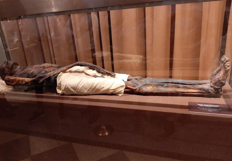مومیایی مصر باستان که در موزه آرمیتاژ سن پترزبورگ نگهداری میشود