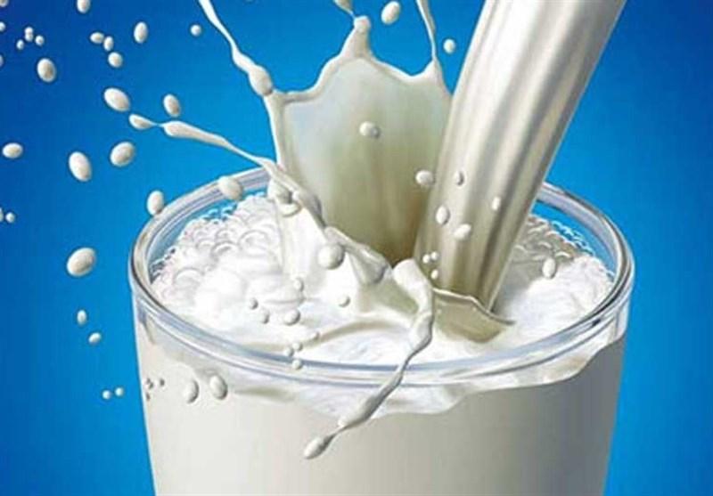 نرخ جدید شیر خام هنوز ابلاغ نشده/ گاوداران: چاره ای جز افزایش قیمت نداریم