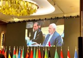 Iran's Zarif Slams US Addiction to Sanctions, Economic Terror