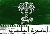 چگونگی به قدرت رسیدن بنیامیه / چرا حضرت زینب (س) به یزید گفت «یا بن الطُلقاء»